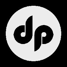 DP_negativ_logo
